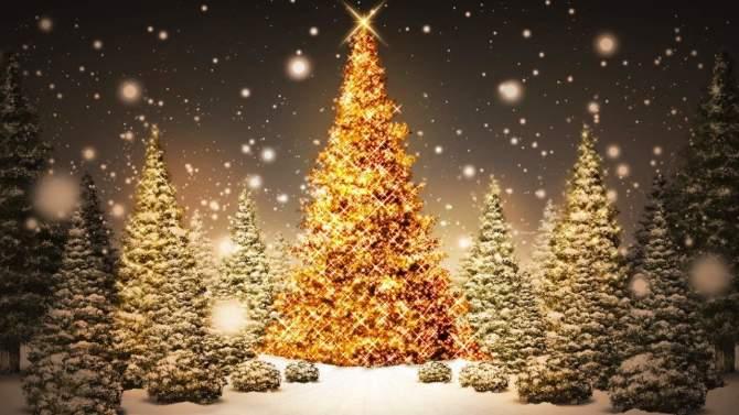 Edizioni MILLE per Natale al Cortile del Maglio e alla Mostra del Libro di Cavallermaggiore